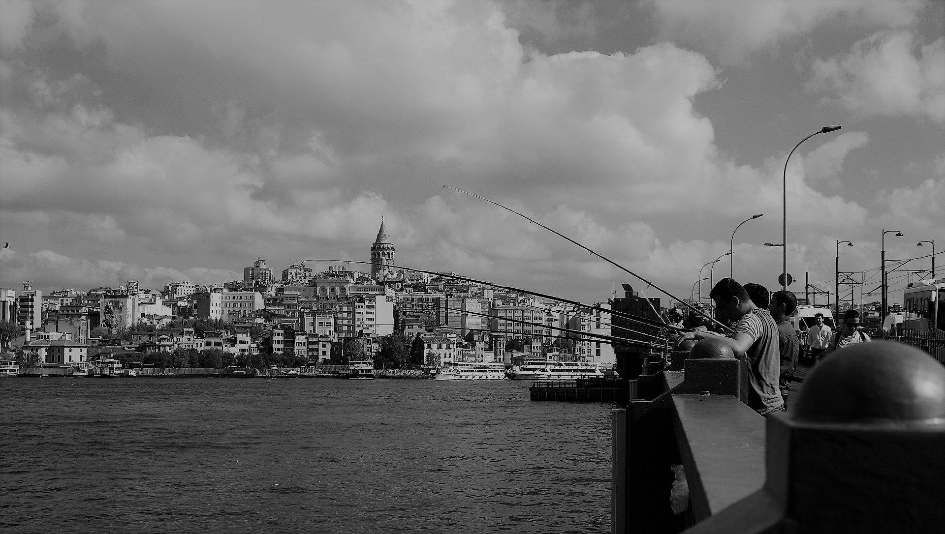 İstanbul'un Balıkları 1