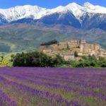 Kırların En Cazibelisi; Provence